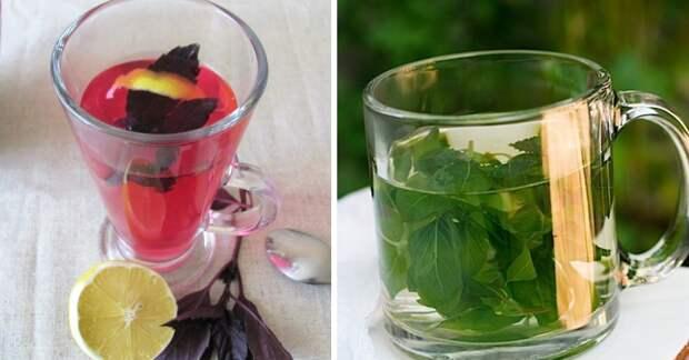 5 причин пить чай с базиликом