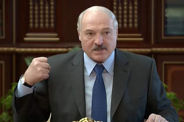 Лукашенко потребовали лишить звания почётного профессора МГУ