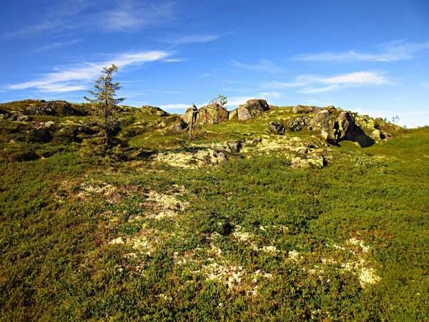 Заповедная гора Нуорунен, затерянная среди бесконечного моря лесного. Крыша Карелии. Подобных мест у нас осталось не так много.