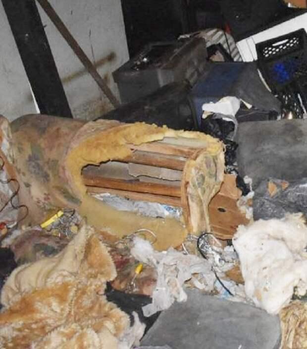Оставшись без крыши над головой, хозяин решил бросить собаку, привязав ее к старой мебели грязного дома