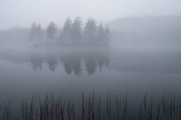 Тамбовчан предупредили о грозах и тумане