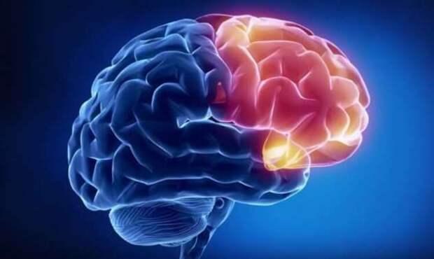 В каком случае мозг человека может превратиться в стекло? (5 фото)