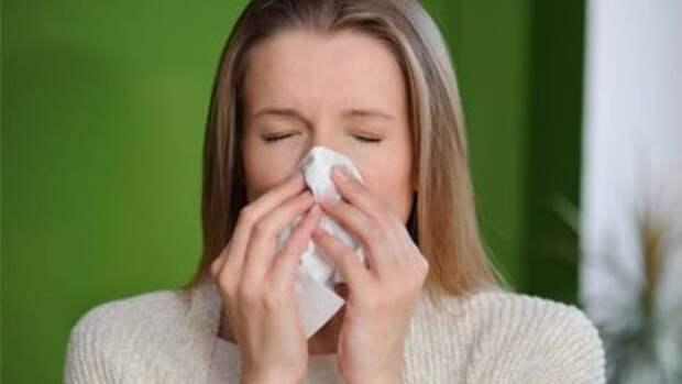 В Московской области фиксируют высокий уровень аллергенов в воздухе