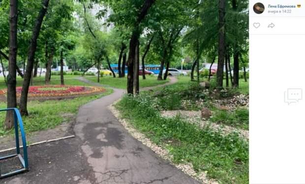 Фото дня: образец ландшафтного дизайна на Онежской