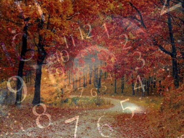 Нумерологический прогноз на октябрь