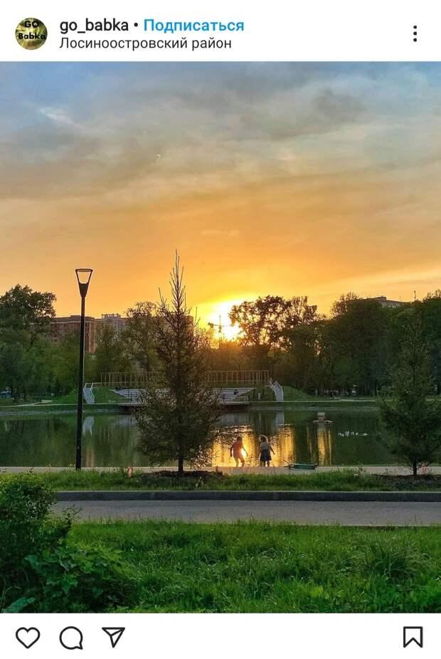 Фото дня: вечер в парке «Торфянка»