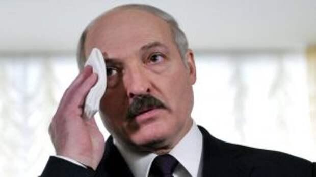 Политолог Дзермант: Лукашенко готовит для Белоруссии преемника : подробности, последние новости