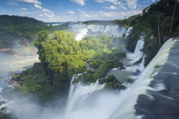 Международный день лесов: названы 15 самых красивых лесов планеты