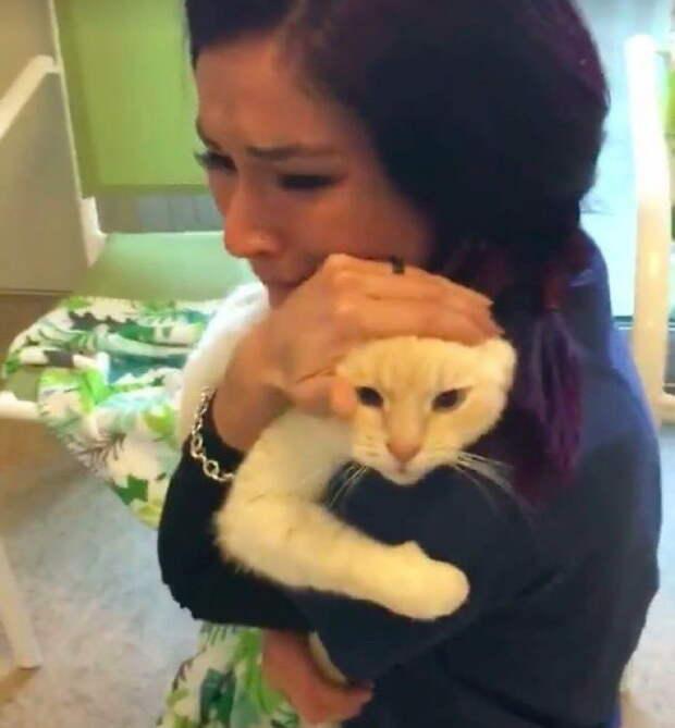 Спустя 2 года девушка всё-таки отыскала своего потерявшегося верного друга…