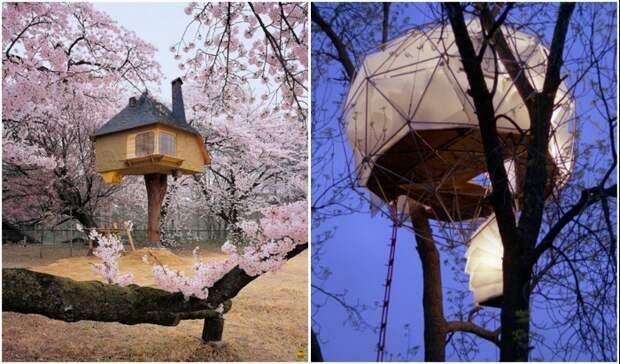7 домиков на дереве, в которых хочется поселиться будучи взрослым