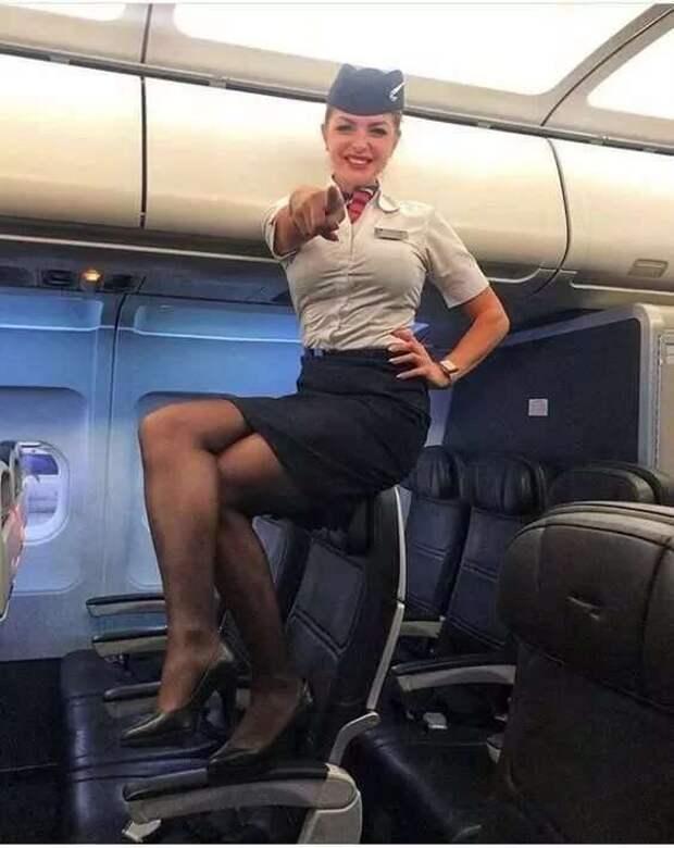 Ножки стюардесс. Подборка chert-poberi-styuardessy-chert-poberi-styuardessy-02020717092021-0 картинка chert-poberi-styuardessy-02020717092021-0