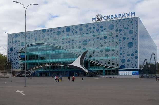 За майские праздники обороты московских музеев выросли почти на 75%