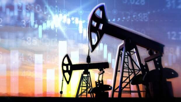 Глава Минприроды оценил уровень запасов природных ресурсов в России