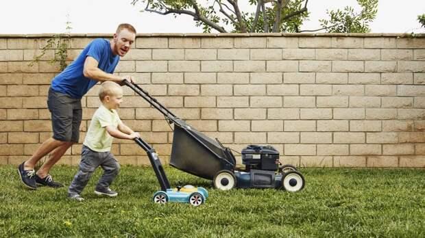 Трава у дома: как выбрать газонокосилку и кому она действительно нужна