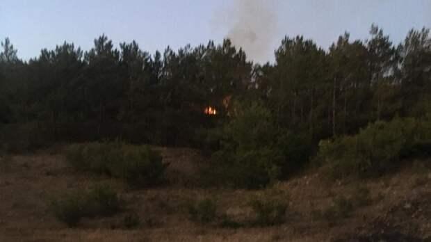 С лесным пожаром в Бахчисарайском районе боролись двое суток