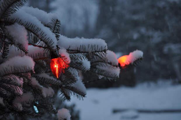 Снегопад продолжится в Удмуртии в четверг