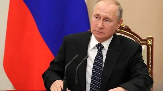 Владимир Путин поручил подготовить законопроект об учёте домашних животных