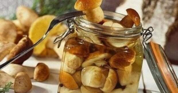 10 заготовок из грибов