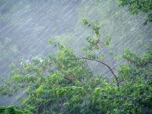 Дождь и сильный ветер ожидаются в Красноярском крае 17 мая