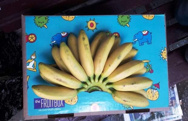 Доставка фруктов из Тая к порогу