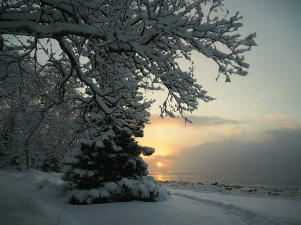 Красоты России (#625)
