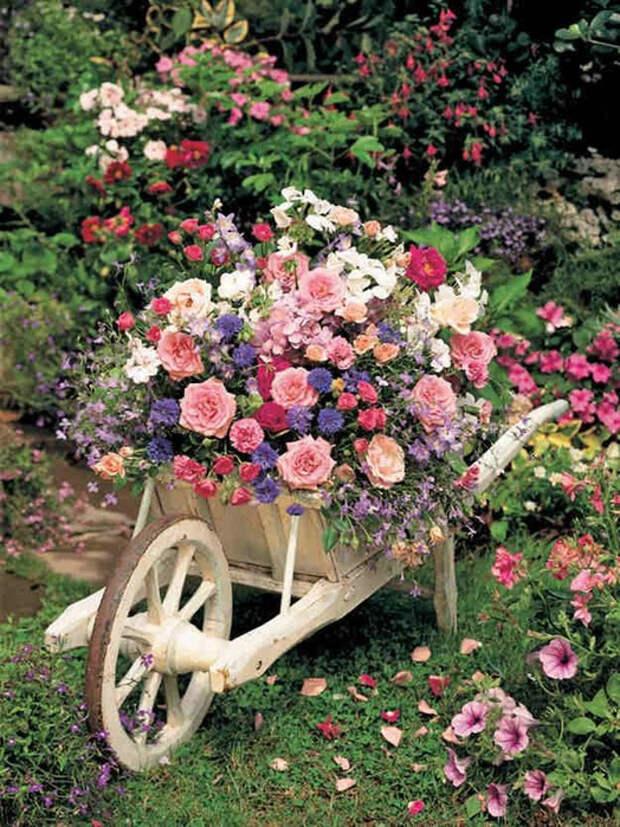 И целая телега цветов...