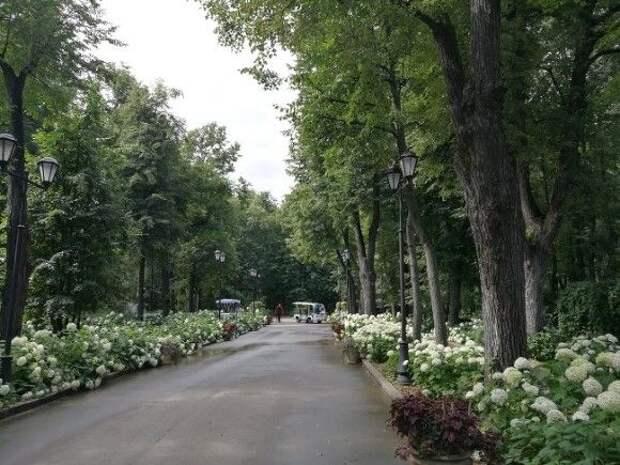 Тепло до 21 градуса: типично майская погода ждет москвичей в выходные