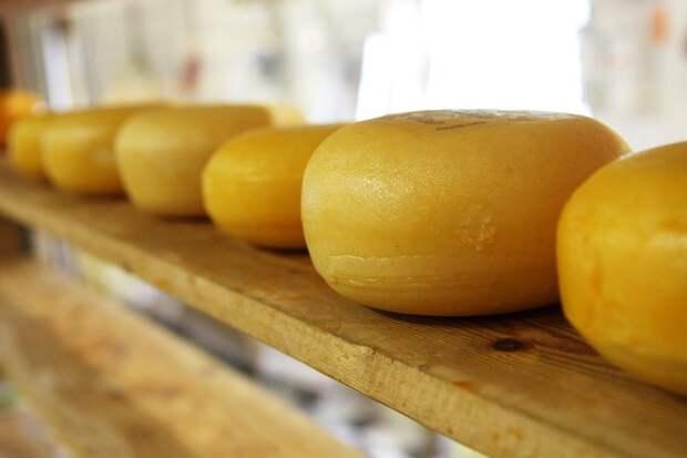 В России отменили ограничения на поставки белорусского сыра