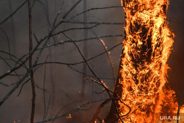 Появилось видео страшного пожара натрассе Екатеринбург—Тюмень