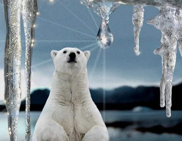 Миф и реальность глобального потепления