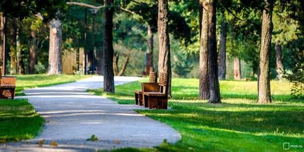 С начала года в парке «Северное Тушино» зафиксирован один случай укуса клещей