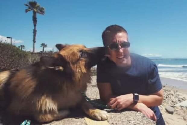 Собака целует мужчину