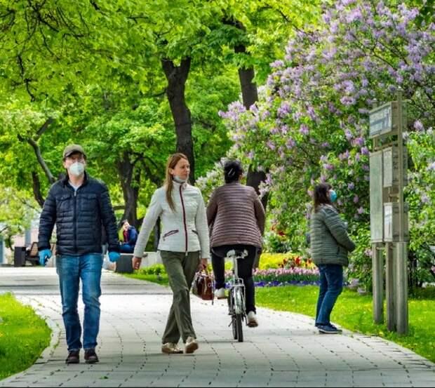 Власти Москвы пояснили правила прогулок для членов одной семьи
