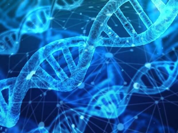 Сверхспособности: если проснутся гены