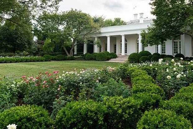 Жена Трампа превратила розарий Белого дома в «кладбище»