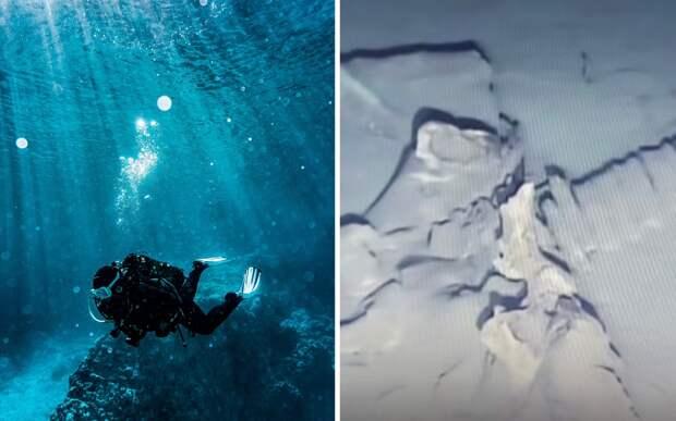 Дайвер обнаружил кости «монстра», не похожего ни на одно морское существо