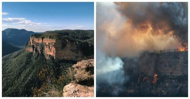 21 фотография, демонстрирующая последствия ужасающих лесных пожаров в Австралии