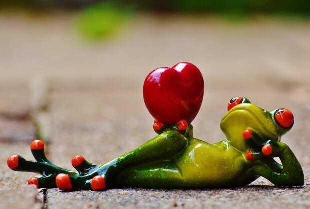 Самые неудачные способы сделать предложение в День всех влюбленных