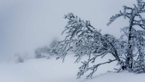 Часть сахалинцев осталась без света из-за плохих погодных условий