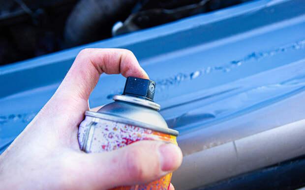 5 способов защитить кузов вашего авто: от диких до люксовых