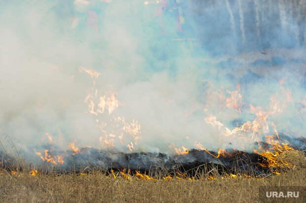 ВЕкатеринбурге горит два гектара леса