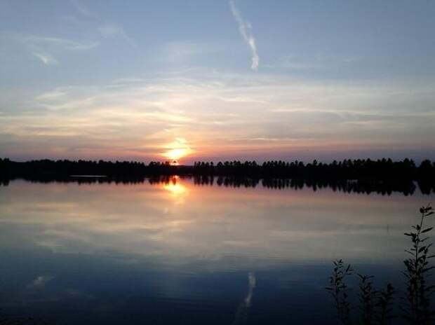 Еще одной экосистеме Ленинградской области угрожает деградация?