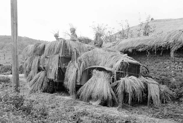 k09 0712 46 впечатляющих снимков Корейской войны