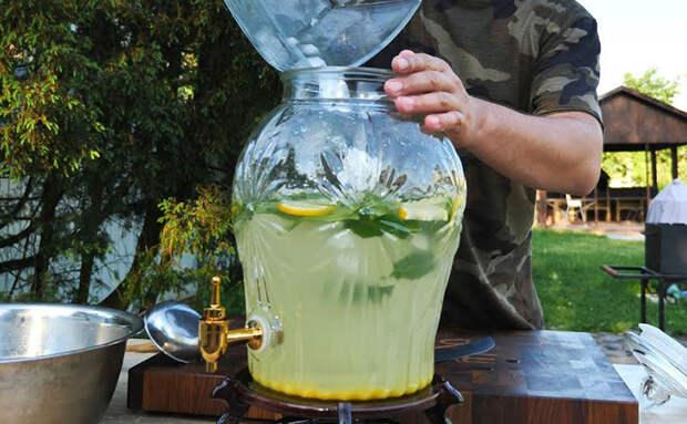 5 литров лимонада за 5 минут: готовим без варки