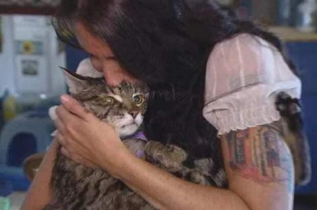Узнав, что кота хотят усыпить, женщина просто похитила его