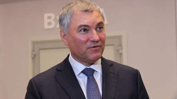 Володин призвал обсудить уход от анонимности в Сети