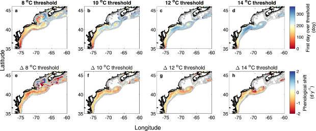 Потепление воды в океане отправило моллюсков на верную гибель