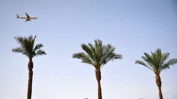 АТОР: туроператоры готовы открыть рейсы в Египет из 20 городов России
