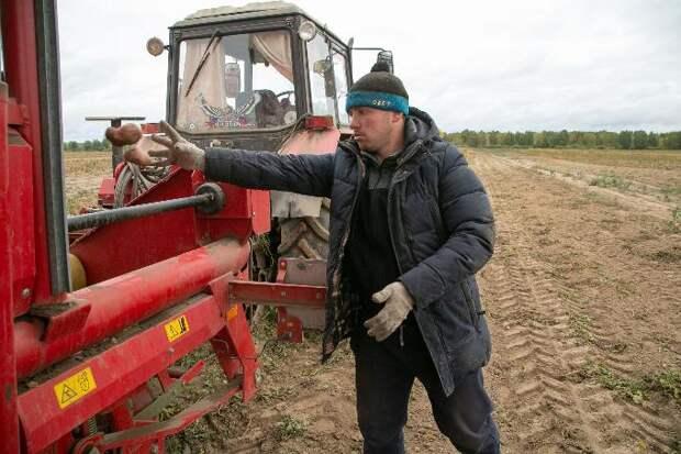 Трактористами и медсестрами не хотят работать выпускники новосибирских школ