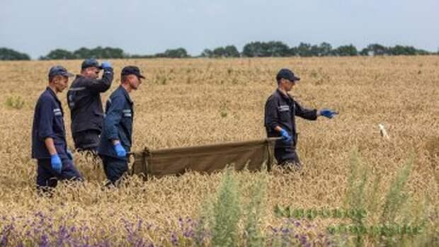 """Падение МН17: все перекладывают вину друг на друга (""""Le Huffington Post"""", Франция)"""